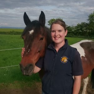 A Career in McTimoney Animal Chiropractic